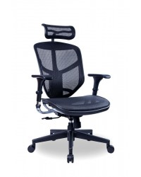 ENJOY (Basic Version) Ergonomic Chair