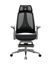 Eiffel Ergonomic Chair w/Legrest