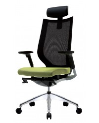 Fortis Ergonomic Chair