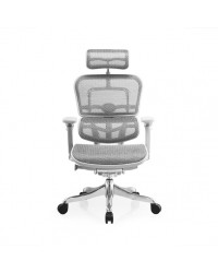 Ergohuman Plus (Luxury Version) Ergonomic Chair