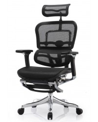 Ergohuman Plus with Legrest (Luxury Version) Ergonomic Chair