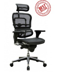 Ergohuman S (Single Lever Standard version)  Ergonomic Chair