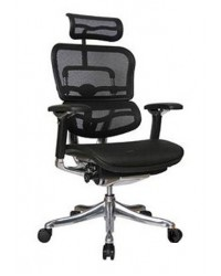 Ergohuman Plus (Elite Version) - Ergonomic Chair