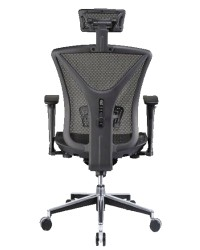 Yvette Ergonomic Chair